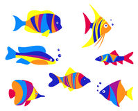 Abstract colorful aquarium fishes Royalty Free Stock Photo