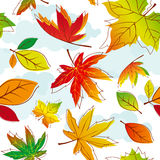 Abstract colorful autumn leaves royalty free stock photos