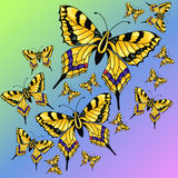 Abstract colorful background with butterflies. Vector illustration Royalty Free Stock Photo