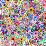 Abstract magic colorfull splashes background. Abstract colorful background with ink spots  and  decorative flowers Royalty Free Stock Photos