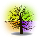 Abstract colorful background with tree Stock Images