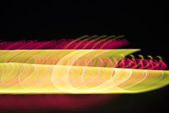 Abstract colorful background. Yellow spirals and red lines on bl. Abstract colorful background. Yellow spirals and  red lines on black stock images