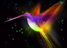 Abstract colorful bird.  Hummingbird Royalty Free Stock Image