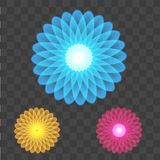 Abstract colorful circles on transparent background. Vector Royalty Free Stock Photo