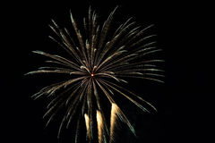 Abstract Colorful fireworks with various colors on dark night backgrounds Stock Photo