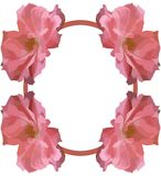 Abstract colorful Floral frame with roses isolated Royalty Free Stock Images