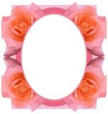 Abstract colorful Floral frame with roses isolated Royalty Free Stock Photos