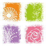 Abstract colorful flower on white background Stock Photos