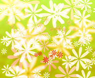 Abstract colorful flowers background. Abstract colorful flowers on green background royalty free illustration