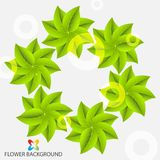 Abstract colorful flowers background template. Layout design for creative tasks Royalty Free Stock Photo