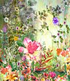 Abstract colorful flowers watercolor painting. Spring multicolored in  nature. Stock Photos