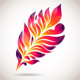 Abstract colorful isolated pink feather Stock Photos