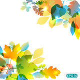 Abstract colorful leafs vector background. With stripes Stock Images