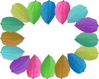 Abstract colorful leaves border frame Stock Images
