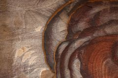 Free Abstract Colorful Patterns Sandstone Gorge Siq,Rose City, Petra, Jordan. Red Canyon Walls Create Many Abstracts. Royalty Free Stock Photo - 116009825