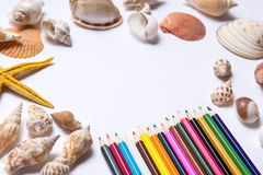 Abstract colorful pencils and starfish on white Stock Photos