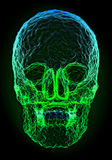 Abstract colorful skull shape Stock Photo