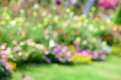 Abstract colorful spring Stock Photos