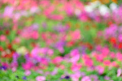 Abstract colorful spring background.  stock photography