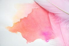 Abstract colorful watercolor on white paper with feathers Stock Photography