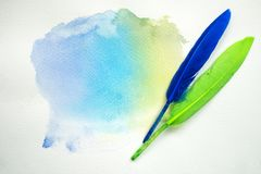 Abstract colorful watercolor on white paper with feathers Royalty Free Stock Image