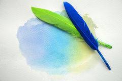 Abstract colorful watercolor on white paper with feathers Royalty Free Stock Images