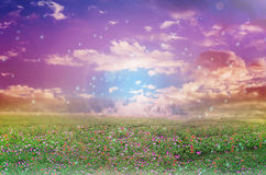 Abstract colourful dreamy like heaven sky with flowers field in Royalty Free Stock Photo