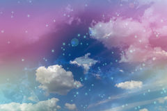 Abstract colourful dreamy like heaven sky with flowers field in Stock Photography