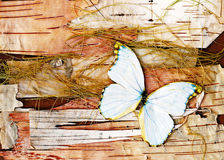 Abstract composition from butterflies, bark and straw. Royalty Free Stock Photo