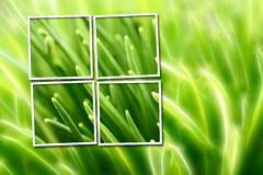 Abstract composition with grass Stock Photography