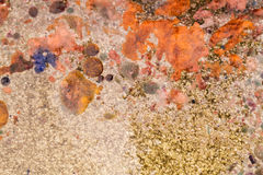 Abstract composition with mix of oil, water and colorful inkt Stock Images