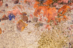 Abstract composition with mix of oil, water and colorful inkt Royalty Free Stock Images