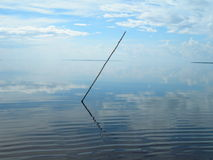 Abstract composition with stick on the Amazon. River and symmetry water and sky royalty free stock photography