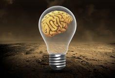 Ideas, Brains, Innovation, Success, Goals, Success. Abstract concept for ideas, innovation, brains, goals and success. An intelligent light bulb with a brain stock photography