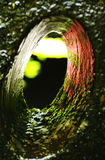 Abstract concept light at the end of the tunnel color green Royalty Free Stock Photos