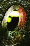 Abstract conceptenlicht aan het eind van de groene tunnelkleur Royalty-vrije Stock Foto's