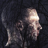 Abstract conceptual collage, man profile and bare tree. Double exposure abstract conceptual collage, man profile and bare trees with shining sun stock photo