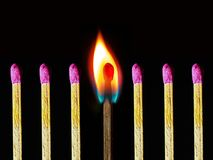 Abstract photo of burning matchstick together with other not burnt matchsticks. Abstract conceptual photo of burning matchstick together with other not burnt royalty free stock image