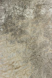 Abstract  Concrete Texture Background Stock Image