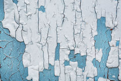 Abstract corroded white and blue background. Paint flaking and cracking texture on rusty wooden texture. Royalty Free Stock Images