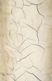 Abstract crack cement wall background Royalty Free Stock Images