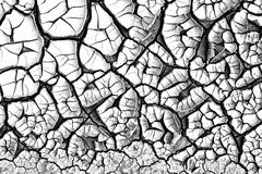 Abstract cracked texture Royalty Free Stock Photo