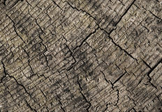 Abstract cracked wood Stock Image