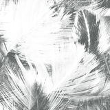 Abstract creative background from feather. Royalty Free Stock Photo