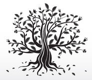 Abstract Creative Tree Stock Photos