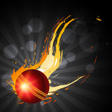 Abstract cricket background Royalty Free Stock Photos
