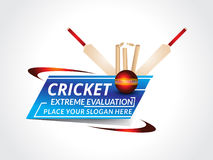 Abstract cricket background with bat Stock Photo