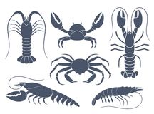 Abstract Crustaceans Royalty Free Stock Photo