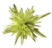 Abstract crystal form - lime Stock Image
