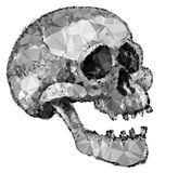 Abstract Crystal Polygonal Skull Stock Afbeeldingen